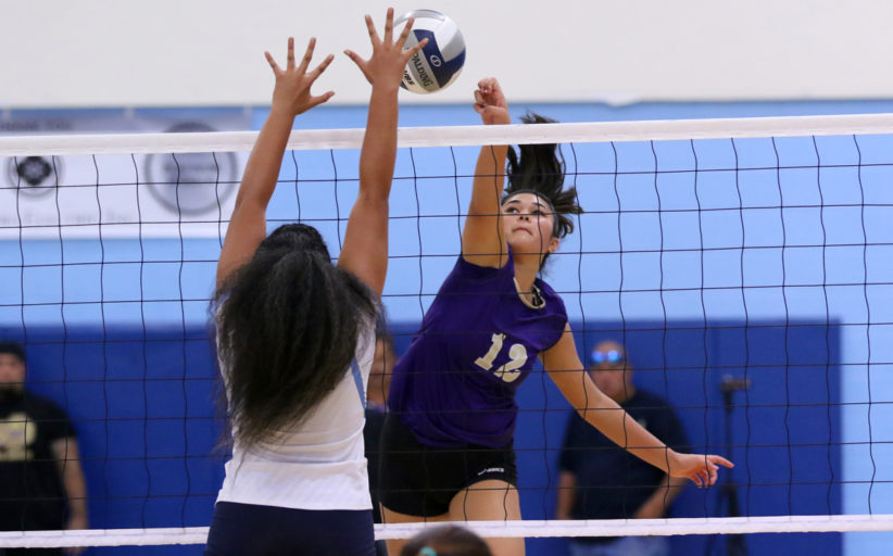 Girls Varsity Division 2 Volleyball: Damien def. Saint Francis 25-12, 25-12