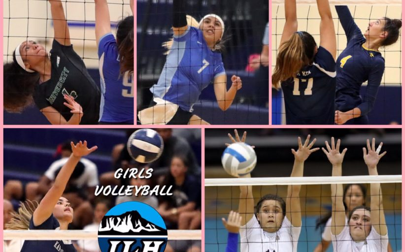 2019-20 Fall Season Sports All-Stars: Girls Volleyball